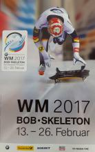 Flyer Bob & Skeleton WM 2017